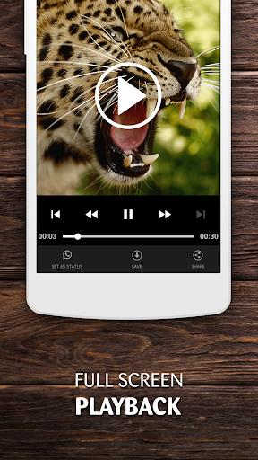 Status Video Download – Story WA - Status Saver 4 تصوير الشاشة