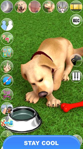 يتحدث جون الكلب: الكلب مضحك 4 تصوير الشاشة