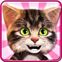 話す猫ボブ - かわいい話赤ちゃん猫 on 9Apps