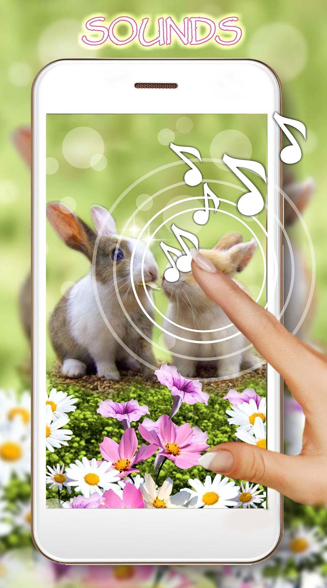 Funny Bunnies live wallpaper 1 تصوير الشاشة
