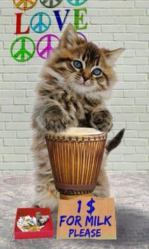القطط مضحك. الرقص واللعب 2 تصوير الشاشة