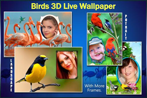 Birds 3D Live Wallpaper 11 تصوير الشاشة