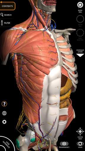 Anatomy 3D Atlas 1 تصوير الشاشة