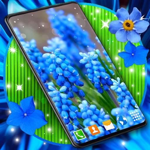 Blue Flowers Live Wallpaper 🌼 Flower 4K Wallpaper