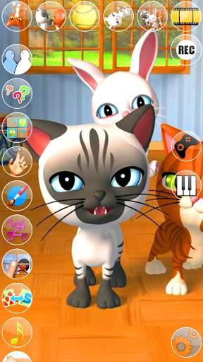 Talking 3 Friends Cats & Bunny screenshot 5
