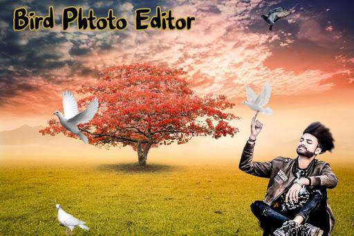 Bird Photo Editor screenshot 5