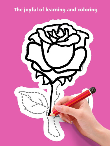 How To Draw Flowers скриншот 21