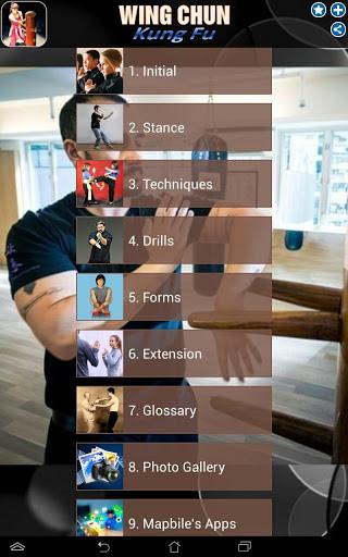 Wing Chun Kung Fu screenshot 11