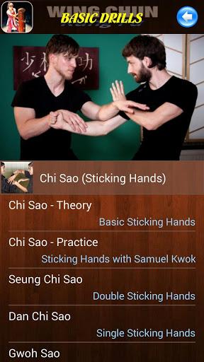 Wing Chun Kung Fu screenshot 5