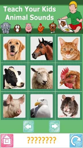 Teach Your Kids Animal Sounds screenshot 1