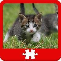 Kucing dan Teka-teki Kittens on 9Apps