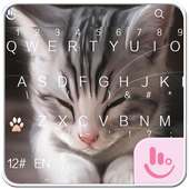 Cats Keyboard Theme on 9Apps
