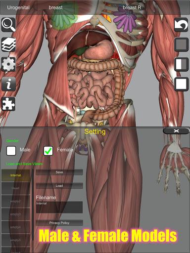 3D Bones and Organs (Anatomy) 13 تصوير الشاشة
