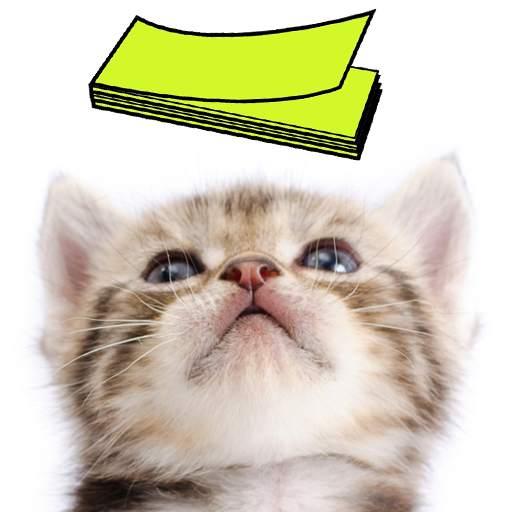 Cat Sticky Note Notepad