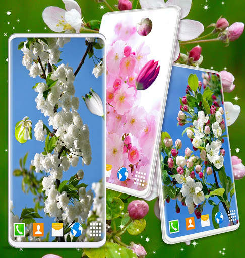 Cherry Blossom Live Wallpaper 🌸 Spring Wallpaper screenshot 8