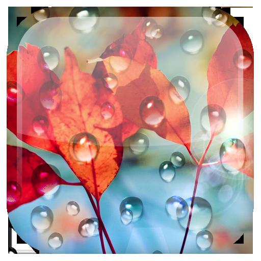 Rains Live Wallpaper أيقونة