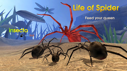 Life of Spider скриншот 3