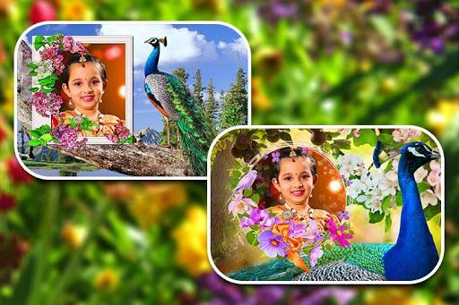 Peacock Photo Frames screenshot 10