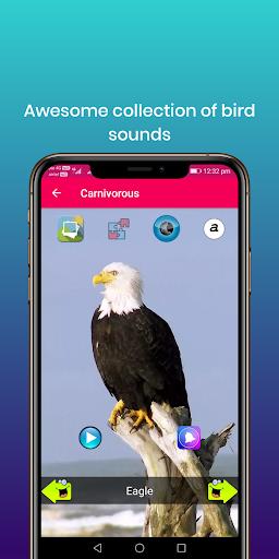 100 suara burung: nada dering, wallpaper screenshot 3