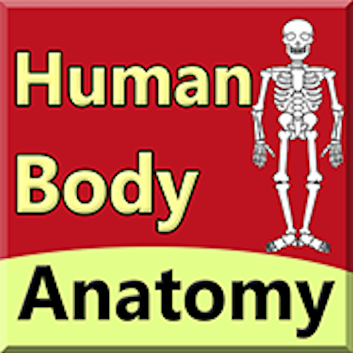 Body Anatomy Guide icon