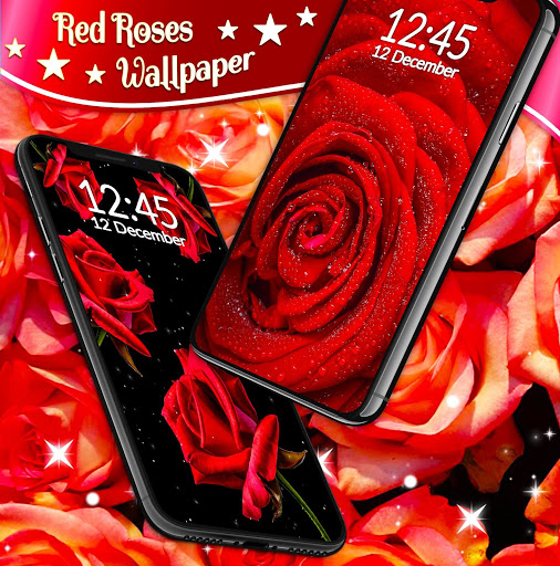 Red Rose Live Wallpaper 🌹 Flowers 4K Wallpapers скриншот 5