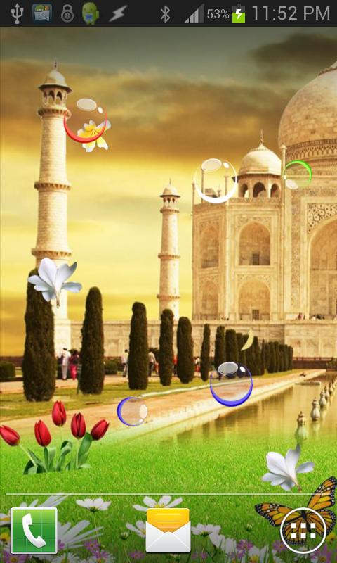 Taj Mahal Birds Live Wallpaper 1 تصوير الشاشة