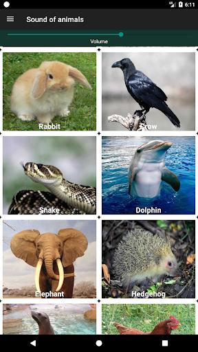 أصوات الحيوانات 4 تصوير الشاشة