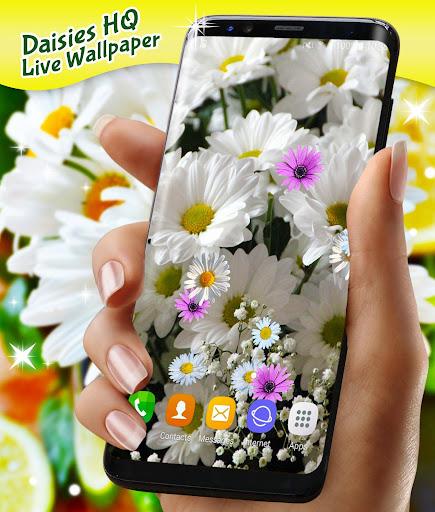 3D Daisy Live Wallpaper 🌼 Spring Field Themes screenshot 4