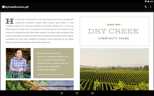 Google PDF Viewer screenshot 5