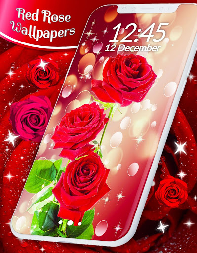 Red Rose Live Wallpaper 🌹 Flowers 4K Wallpapers скриншот 1