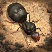 The Ants: Underground Kingdom on 9Apps