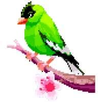Birds Color by Number: Pixel Art, Sandbox Coloring on APKTom