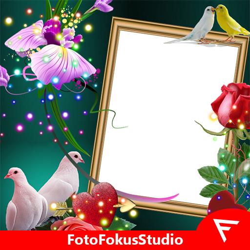 Love Birds Insta DP : Bird DP Frames & Wallpapers icon