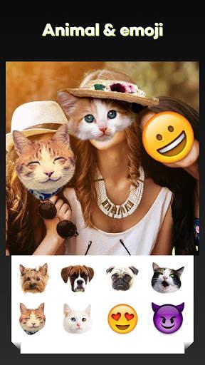 Beauty Face Plus :  face morphing screenshot 7