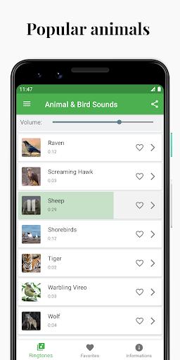 Bird and Animal soundboard screenshot 3