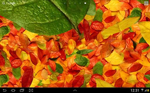 Autumn leaves 3D LWP screenshot 7