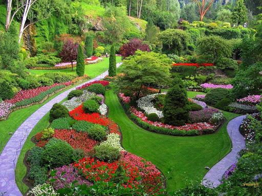 Garden Wallpaper screenshot 3