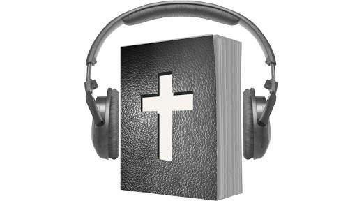 Audio Bible screenshot 1