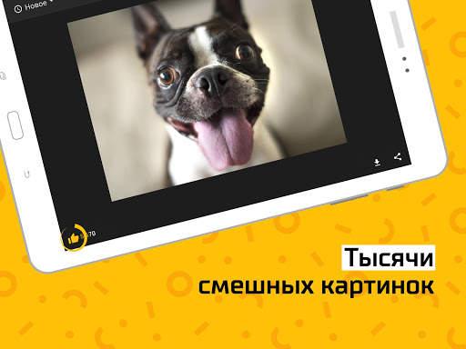 АйДаПрикол — смешные фото и гифки каждый день screenshot 7