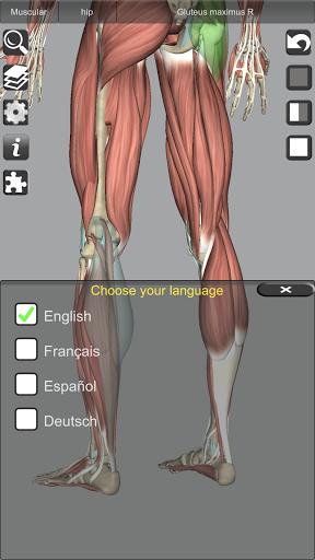 3D Bones and Organs (Anatomy) 16 تصوير الشاشة