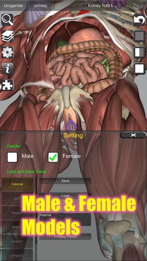 3D Bones and Organs (Anatomy) 6 تصوير الشاشة