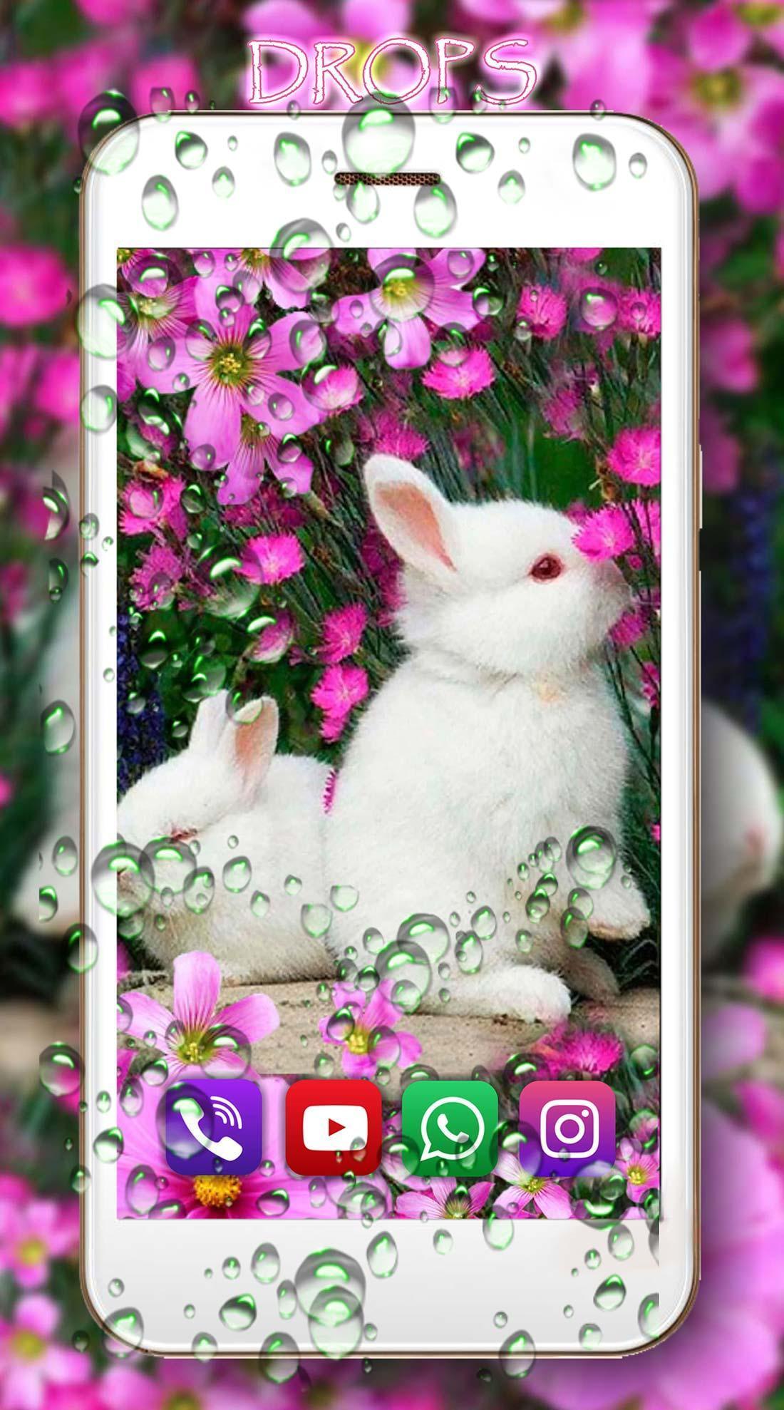 Funny Bunnies live wallpaper 2 تصوير الشاشة