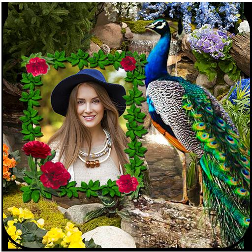 Peacock Photo Frames icon