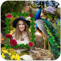 Peacock Photo Frames on 9Apps