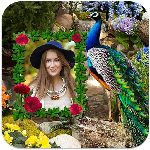 Peacock Photo Frames