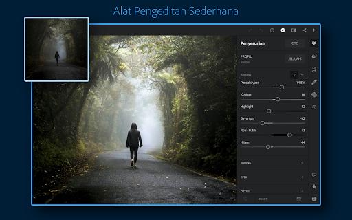 Adobe Lightroom - Editor Foto screenshot 9