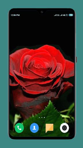Flowers Wallpaper 4K screenshot 6