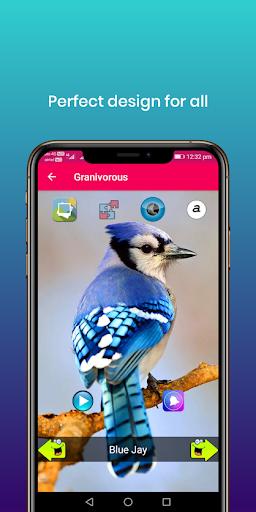 100 suara burung: nada dering, wallpaper screenshot 16