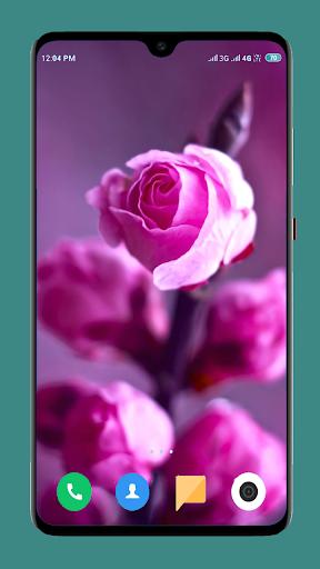 Flowers Wallpaper 4K screenshot 13