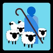 Daily Shepherd icon